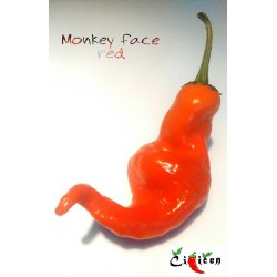 Monkey Face Red (10 semen)