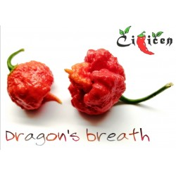 Dragon's Breath - Feno Stinger, 10 semen